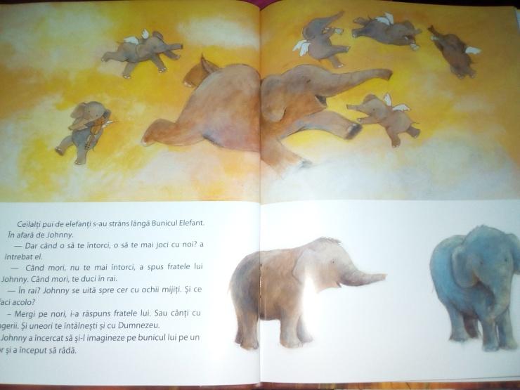 elefant2.2.jpg