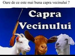 capra