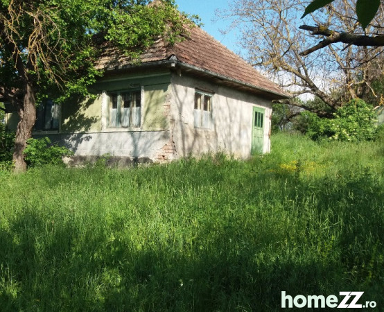 671377_casa-la-tara-borsa-8700mp-teren_3.jpg